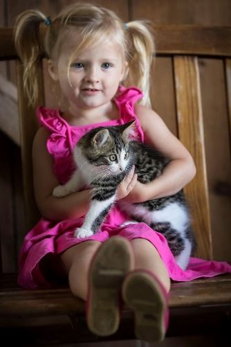 Little girl holding kitten at Mulberry Lane Farm