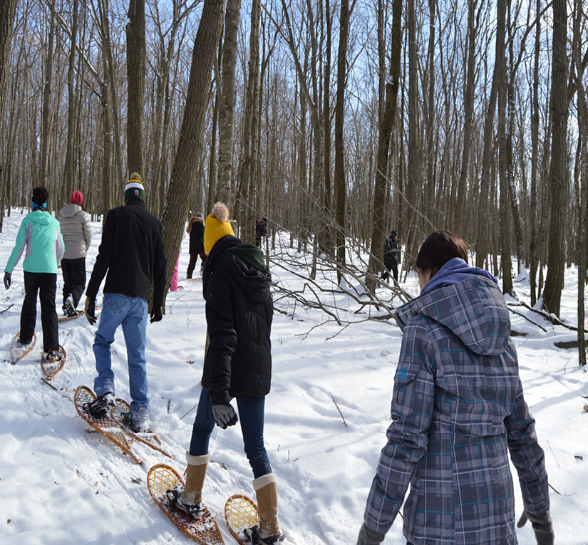 Group of people snowshoeing in Ledge View Nature Center.
