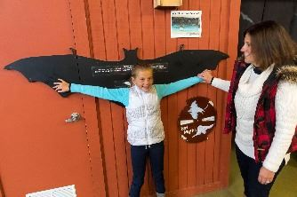 Girl expands arms to fit bat wing display at Ledge View Nature Center